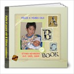 Felix-Ethan - 8x8 Photo Book (60 pages)