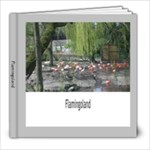 Flamingoland - 8x8 Photo Book (20 pages)
