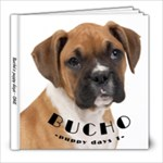 bucho - 8x8 Photo Book (20 pages)