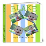 Blake 1-2 - 8x8 Photo Book (20 pages)
