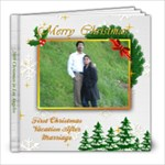 US Holidays 2 - 8x8 Photo Book (20 pages)