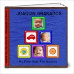 Joaquin s First Few Months - 8x8 Photo Book (20 pages)