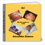 ari3 - 8x8 Photo Book (20 pages)