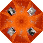 Bold Orange & Beautiful folding Umbrella
