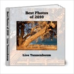 best of 2010 - 6x6 Photo Book (20 pages)