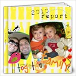 year in review 2010 - 12x12 Photo Book (20 pages)