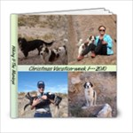 Christmas Vacation 2010 - 6x6 Photo Book (20 pages)