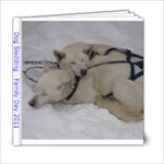 DogSledding - 6x6 Photo Book (20 pages)