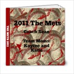 THE METS - 6x6 Photo Book (20 pages)