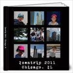 Chicago 2011 - 12x12 Photo Book (20 pages)
