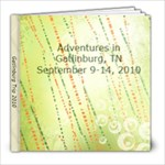 Gatlinburg Trip 2010 - 8x8 Photo Book (20 pages)