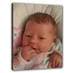Kenz - Bouncy Seat - Canvas 20  x 16  (Stretched)