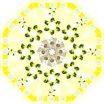 Mellow Yellow Folding Umbrella