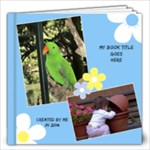 Sunny Days 12x12 Book (40 Pages) - 12x12 Photo Book (40 pages)