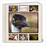 2012 Year in Review - Starry Night - 8x8 - Cream - 8x8 Photo Book (30 pages)