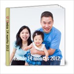 Ambie 14 months Face - 6x6 Photo Book (20 pages)