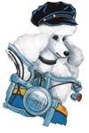 White Biker Poodle
