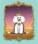 White Poodle Prince