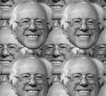 Bernie Heads (Full Coverage)