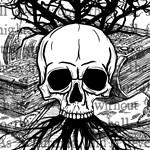 Skull & Books