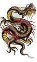 dragon 010