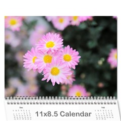 Chrysanthemum By Photo   Wall Calendar 11  X 8 5  (12 Months)   Tqvh4z5gybsj   Www Artscow Com Cover