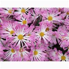 Chrysanthemum By Photo   Wall Calendar 11  X 8 5  (12 Months)   Tqvh4z5gybsj   Www Artscow Com Month