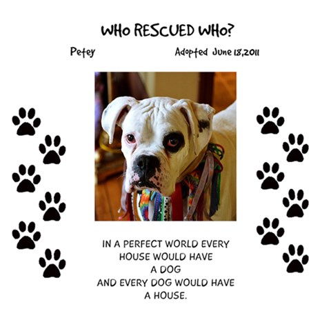Who Rescued Who By Ann   Scrapbook Page 12  X 12    Jqweusdkfiam   Www Artscow Com 12 x12 Scrapbook Page - 1