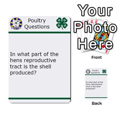 Poultry Question Cards By Lmw   Multi Purpose Cards (rectangle)   4zo8denyjrd7   Www Artscow Com Front 3