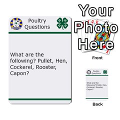 Poultry Question Cards By Lmw   Multi Purpose Cards (rectangle)   4zo8denyjrd7   Www Artscow Com Front 4