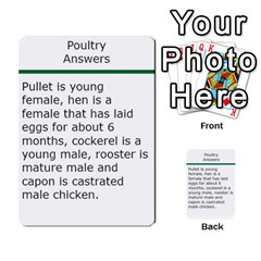 Poultry Question Cards By Lmw   Multi Purpose Cards (rectangle)   4zo8denyjrd7   Www Artscow Com Back 4
