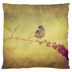 Palm Warbler Large Cushion Case (one Side) by heathergreen