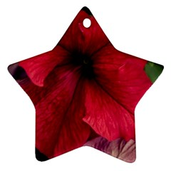 Red Peonies Twin Sided Ceramic Ornament (star) by Elanga