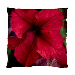 Red Peonies Single Sided Cushion Case