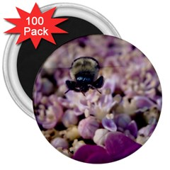 Flying Bumble Bee 100 Pack Large Magnet (round) by Elanga