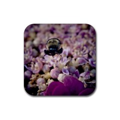 Flying Bumble Bee 4 Pack Rubber Drinks Coaster (square) by Elanga