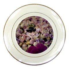 Flying Bumble Bee Porcelain Display Plate