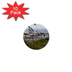 Cocoa Beach, Fl 10 Pack Mini Button (round)