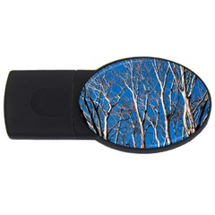 Trees On Blue Sky 4gb Usb Flash Drive (oval) by Elanga