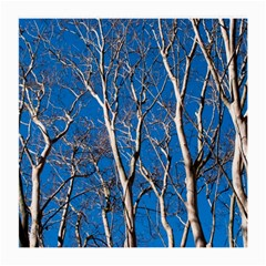 Trees on Blue Sky Twin-sided Large Glasses Cleaning Cloth by Elanga