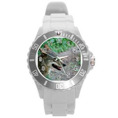 Red Wolf Plastic Sport Watch (large) by AnimalLover