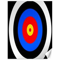 Target Canvas 12  X 16  (unframed) by hlehnerer