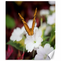 Butterfly 159 Canvas 20  X 24  (unframed) by pictureperfectphotography