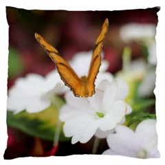 Butterfly 159 Large Cushion Case (two Sides) by pictureperfectphotography