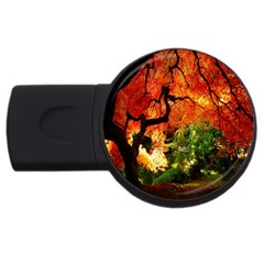Red And Green Leaves Earth Autumn USB Flash Drive Round (2 GB) by FeaturedDesigns