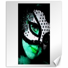 Masked Canvas 20  X 24  (unframed) by dray6389