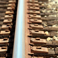 Train Track Canvas 20  X 20  (unframed) by hlehnerer