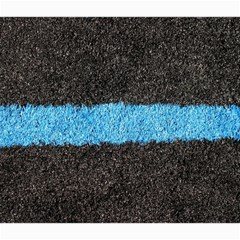 Black Blue Lawn Canvas 16  X 16  (unframed) by hlehnerer