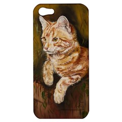Cute Cat Apple Iphone 5 Hardshell Case by cutepetshop
