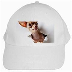 Chihuahua White Baseball Cap by cutepetshop